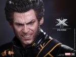 Hot Toys_X-Men The Last Stand_ Wolverine_PR10