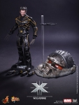 Hot Toys_X-Men The Last Stand_ Wolverine_PR15 (1)